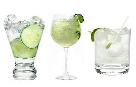 Amargo seco cítrico: gin-tonic